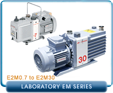 Edwards E2M Laboratory Series Rotary Vane Vacuum Pump Repair and Rebuild Kits