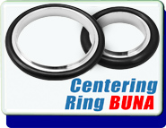 ISO KF or NW Centering Ring Buna And Stainless Steel
