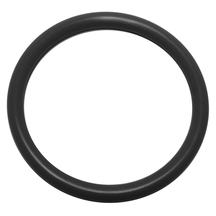 centering ring o ring replacement viton nw100 iso 100. Black Bedroom Furniture Sets. Home Design Ideas